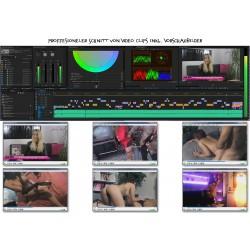 Professioneller Videoschnitt (Amateur)